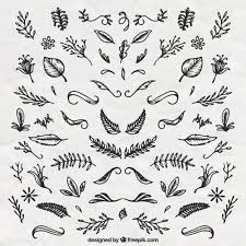 flowers ornaments set vector free