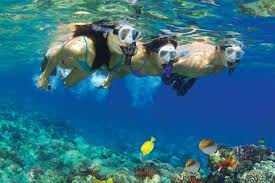 Wyoming Snorkeling images Molokini wild side eco adventure jpg