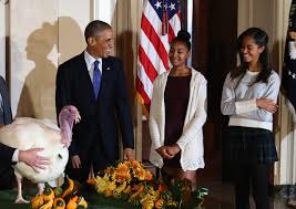 obama thanksgiving turkey sometimes obama is just a dad too huffpost
