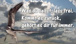sprüche und weisheiten liebe freiheit himmel vogel ewigkeit vertrauen sprüche