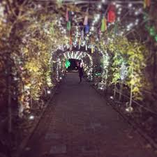 Ginter Botanical Garden Real Richmond Review Dominion Gardenfest Of Lights At Lewis