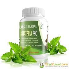 obat kuat herbal khusus penderita diabetes lhiformen obat kuat