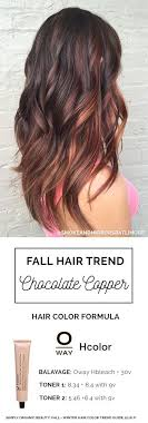 hair colour to suit a 40 year old best 25 hair colors for fall ideas on pinterest fall hair