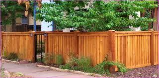 100 backyard fence decorating ideas good looking green ivy