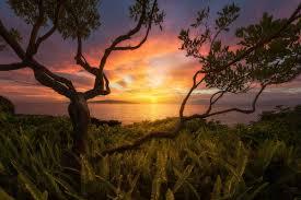 landscapes images Transcendence and allure of landscape photography widewalls jpg