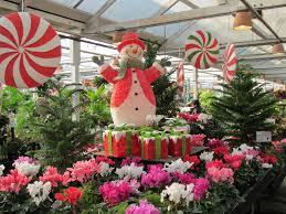 around puget sound and beyond holiday time molbak u0027s nursery at