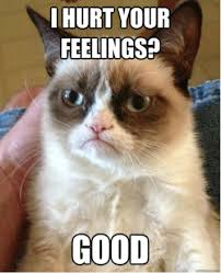 Angry Cat Meme Good - if you re reading this it s not too late for you to start using memes