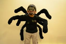 spider costume with pictures