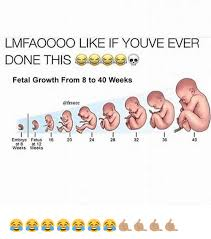 Fetus Meme - lmfaoooo like if youve ever done this fetal growth from 8 to 40