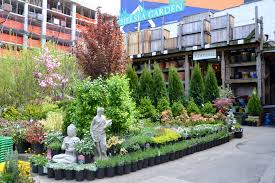 best garden store options in nyc for plants flowers landscaping