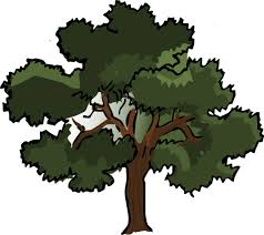 oak tree graphic free clip free clip on