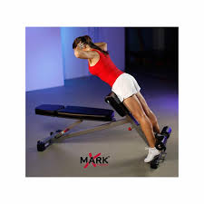 Professional Weight Bench Xm 7631 Ab Hyper U0026 Preacher Curl Bench