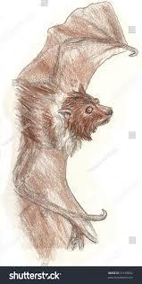 colored pencil sketch small brown bat stock illustration 31169092