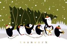 shop cards with photos and illustrations of penguins