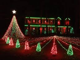 mini tree light bulbs lights blinking count