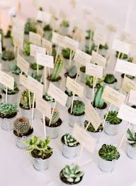 succulent wedding favors succulent wedding favors best photos wedding ideas