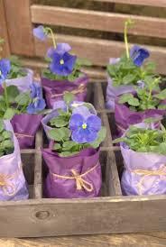 best 25 plant wedding favors best 25 shower favors ideas on bridal shower favors