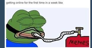 Frog Memes - depressed frog meme 28 images depressed frog memes image memes