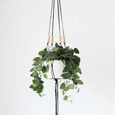 Modern Hanging Planters by More Colors Large Hanging Planter Without Pot Modern Macrame
