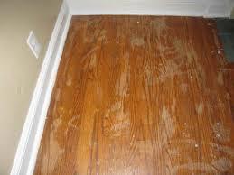 Refinishing Wood Floors Without Sanding Hardwood Floor Sander Wasedajp Home Deco Inspirations