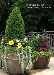 Unique Plant Pots 810 Best Great Containers Images On Pinterest Flowers Plants
