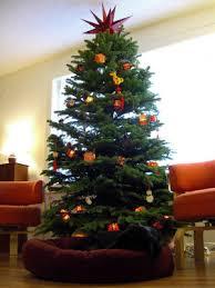 planting an idea choosing a real vs artificial christmas tree