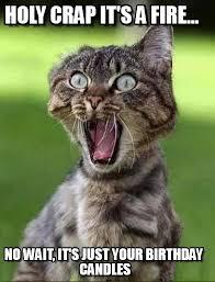 holy crap it s a fire screaming cat meme on memegen