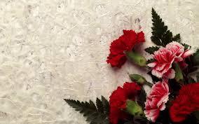 most beautiful flower wallpapers hd wallpapers pinterest hd