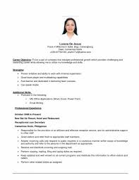 Sample Resume Objective Statements by Cover Letter Example Resume Objective Statements Good Resume