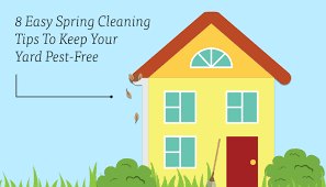 Spring Cleaning Tips 8 Easy Spring Cleaning Tips To Keep Your Yard Pest Free