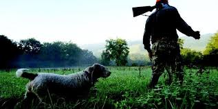 chambre froide chasse lot et garonne des chasseurs se font voler leurs sangliers sud