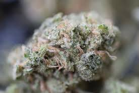 what makes weed sticky woahstork learn