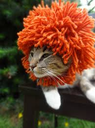 Dog Halloween Costume Lion Mane Cute Pet Accessories Pet Costume Lion Mane Wig Dog Cat