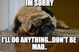 Dont Be Mad Meme - best 21 i m sorry memes life quotes humor