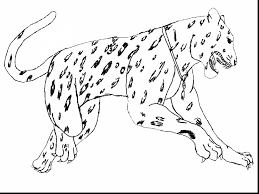 outstanding jaguar animal coloring pages with coloring pages of