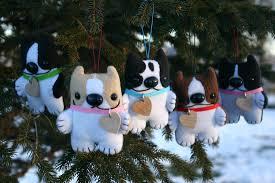 blog archives matthew zane u0027s boston terriers