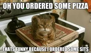 Cat Sitting Meme - cat sitting on pizza weknowmemes
