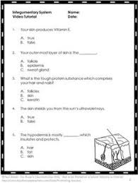 free skeletal system free video and worksheet science human body