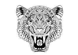 tigre animaux coloriages difficiles pour adultes justcolor