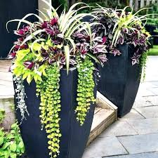 best planters tall outdoor planters tall garden pot best tall outdoor planters