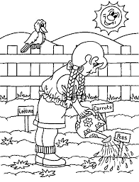 15 Best Coloring Pages Images On Pinterest Coloring Sheets Photosynthesis Coloring Page
