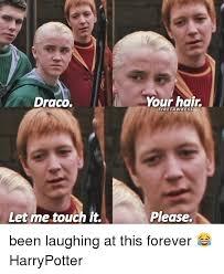 Draco Memes - draco let me touch it your hair fire fa wkess please been laughing