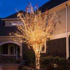 Mini Outdoor Lights 149 Best Outdoor Decorations Images On Pinterest