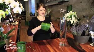 Tall Glass Vase Flower Arrangement Sweetpea U0027s Using Cut Flowers In A Tall Glass Vase Youtube
