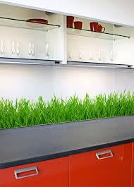 küche spritzschutz folie attraktiv wandfolie küche spritzschutz und beste ideen arctar
