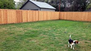 our adventure building a western red cedar privacy fence in dallas