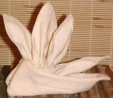 Decorative Napkin Folding Learn Fancy Napkin Folds