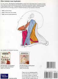anatomy coloring book pearson el extranjero archive the anatomy coloring book by