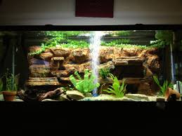 aquarium decoration ideas freshwater home accessories wonderful aquascape designs with artificial plants