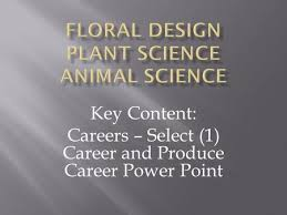 key content careers u2013 resume and job application ppt download